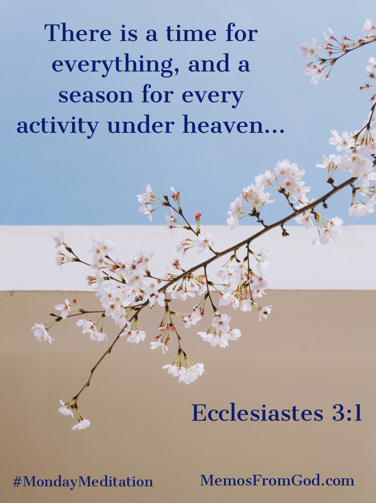 There is a time for everything, and a season for every activity under heaven... Ecclesiastes 3:1