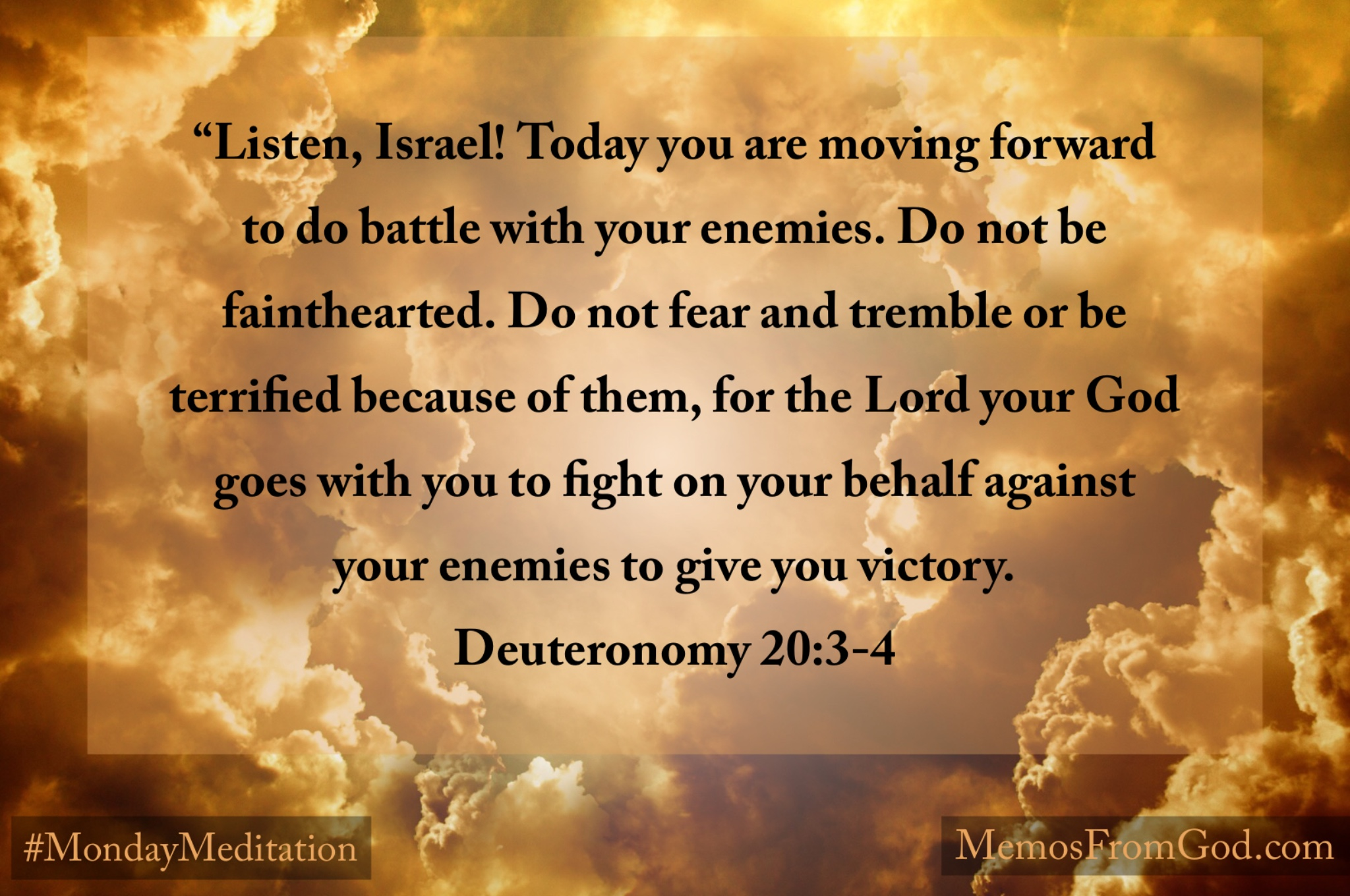"""Listen, Israel! Today you are moving forward to do battle with your enemies. Do not be fainthearted. Do not fear and tremble or be terrified because of them, for the Lord your God goes with you to fight on your behalf against your enemies to give you victory. Deuteronomy 20:3-4"