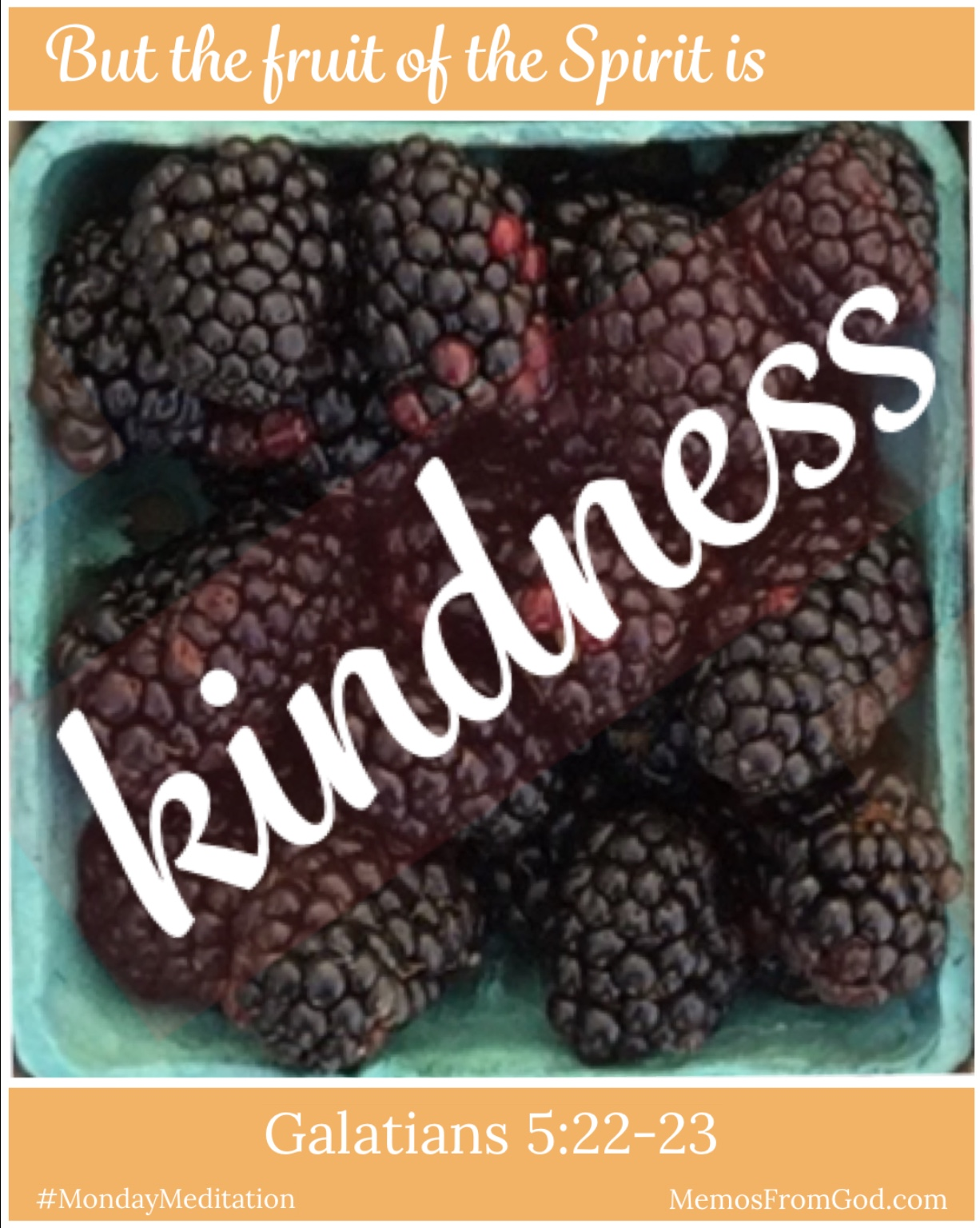 The top view of a pint box of blackberries. Caption: But the fruit of the Spirit is kindness. Galatians 5:22-23