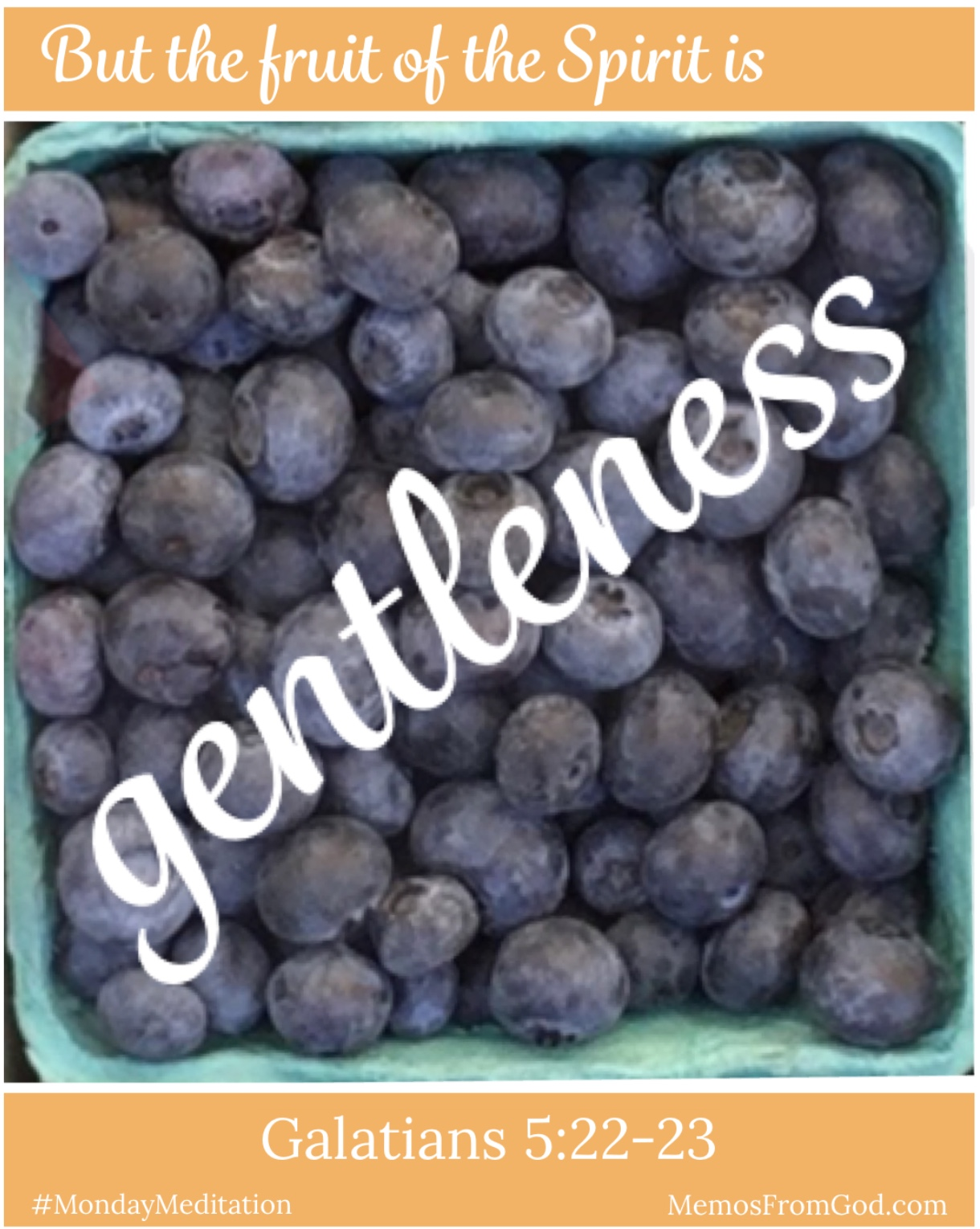 The top view of a pint box of blueberries. Caption: But the fruit of the Spirit is gentleness. Galatians 5:22-23