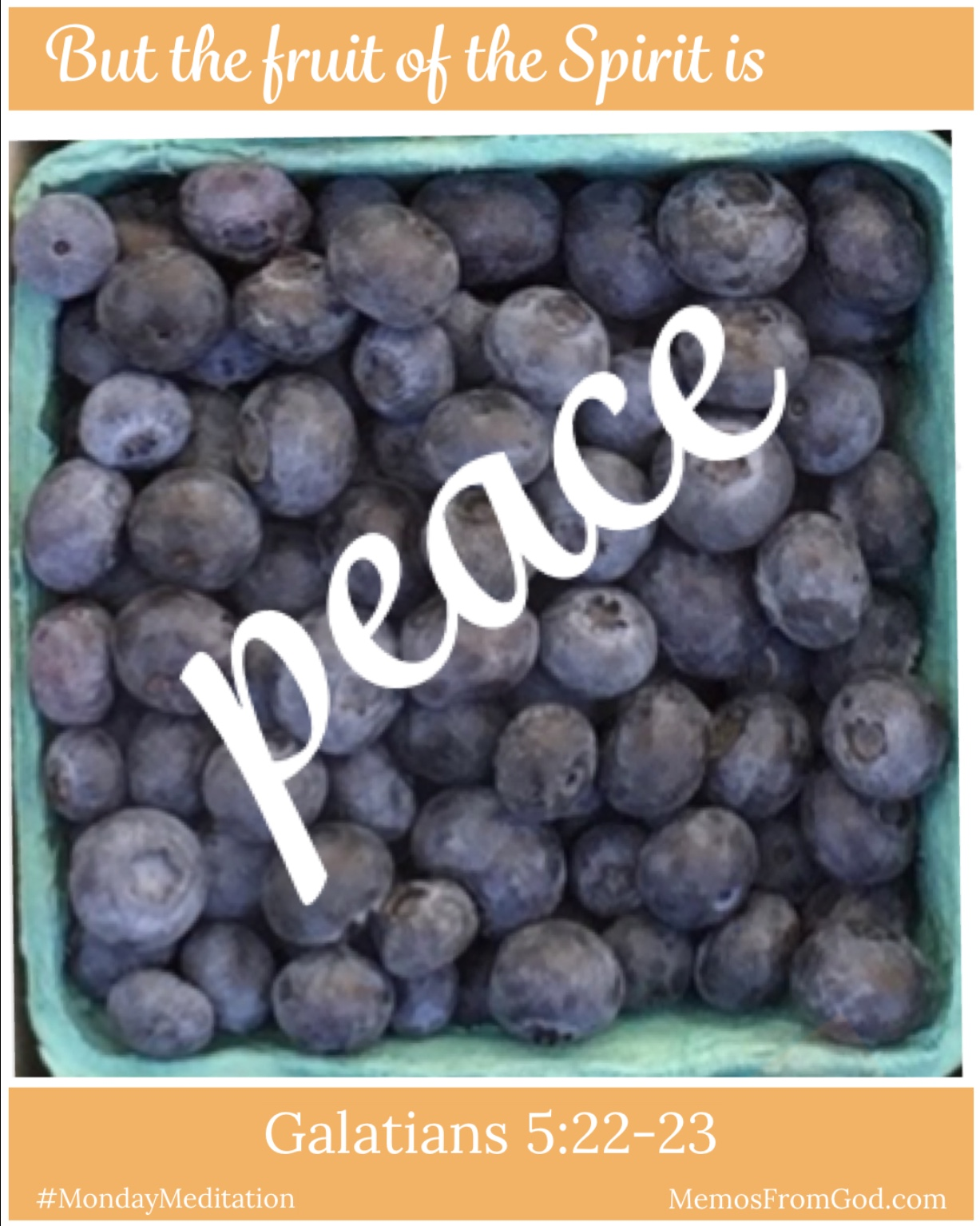 The top view of a pint box of blueberries. Caption: But the fruit of the Spirit is peace. Galatians 5:22-23