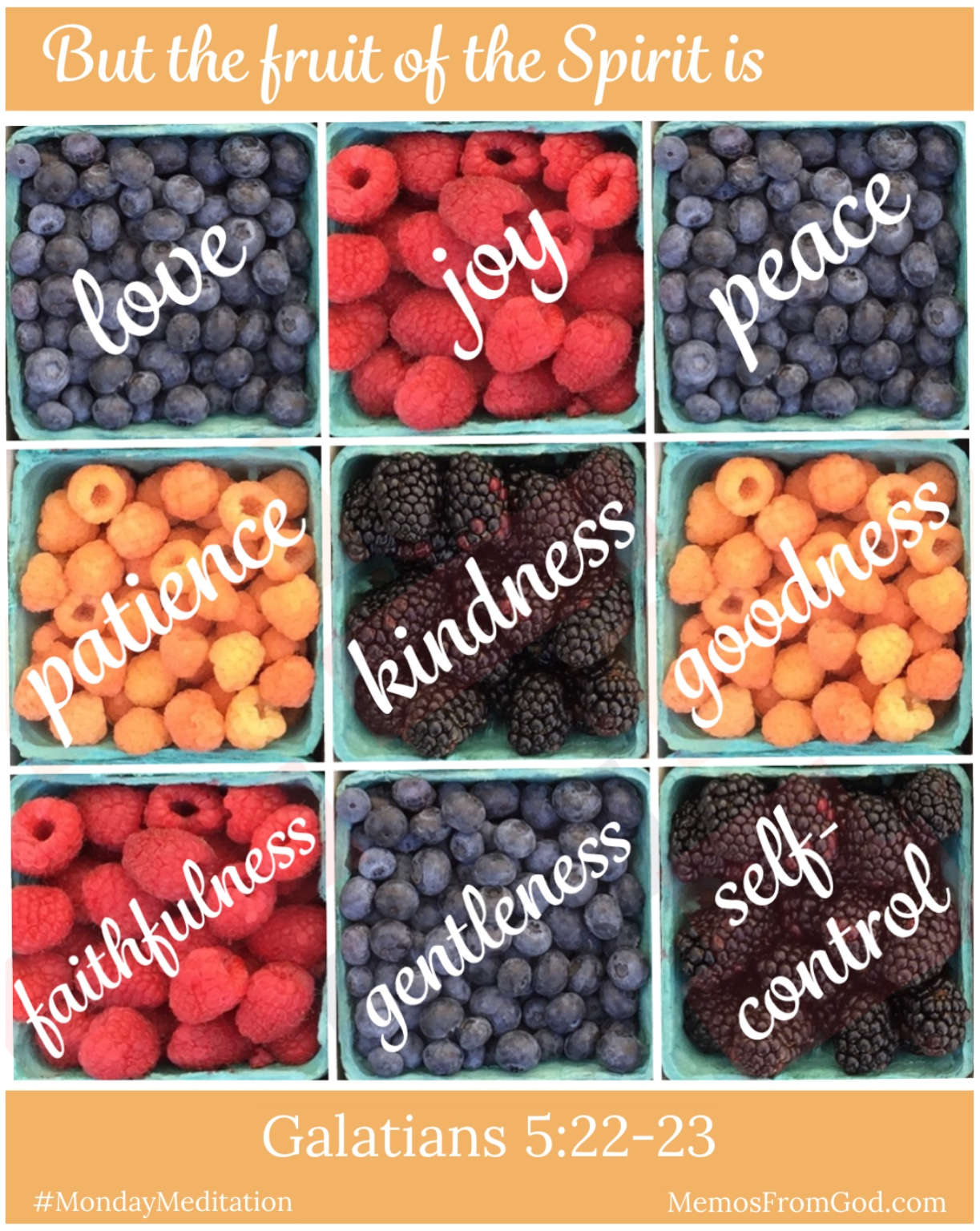 The top view of nine pint boxes of berries, including blueberries, blackberries, red raspberries and golden raspberries. Caption: But the fruit of the Spirit is love, joy, peace, patience, kindness, goodness, faithfulness, gentleness, and self-control. Galatians 5:22-23