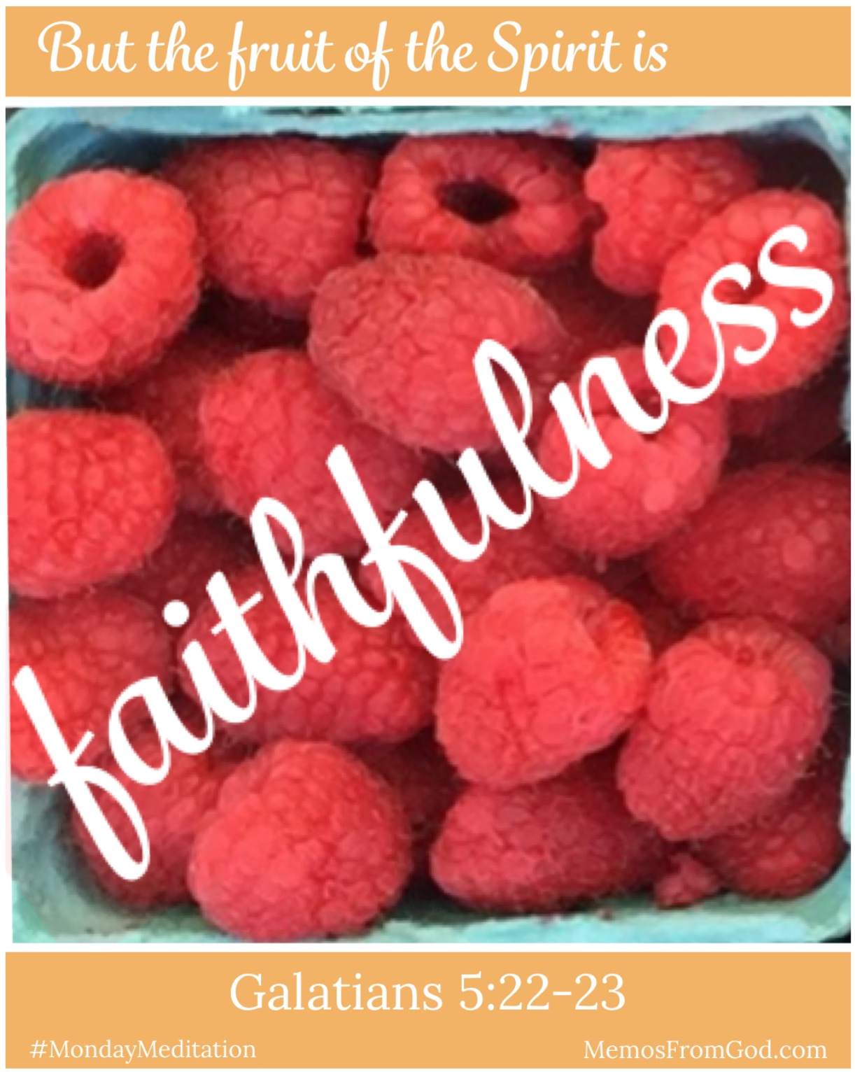 The top view of a pint box of red raspberries. Caption: But the fruit of the Spirit is faithfulness. Galatians 5:22-23