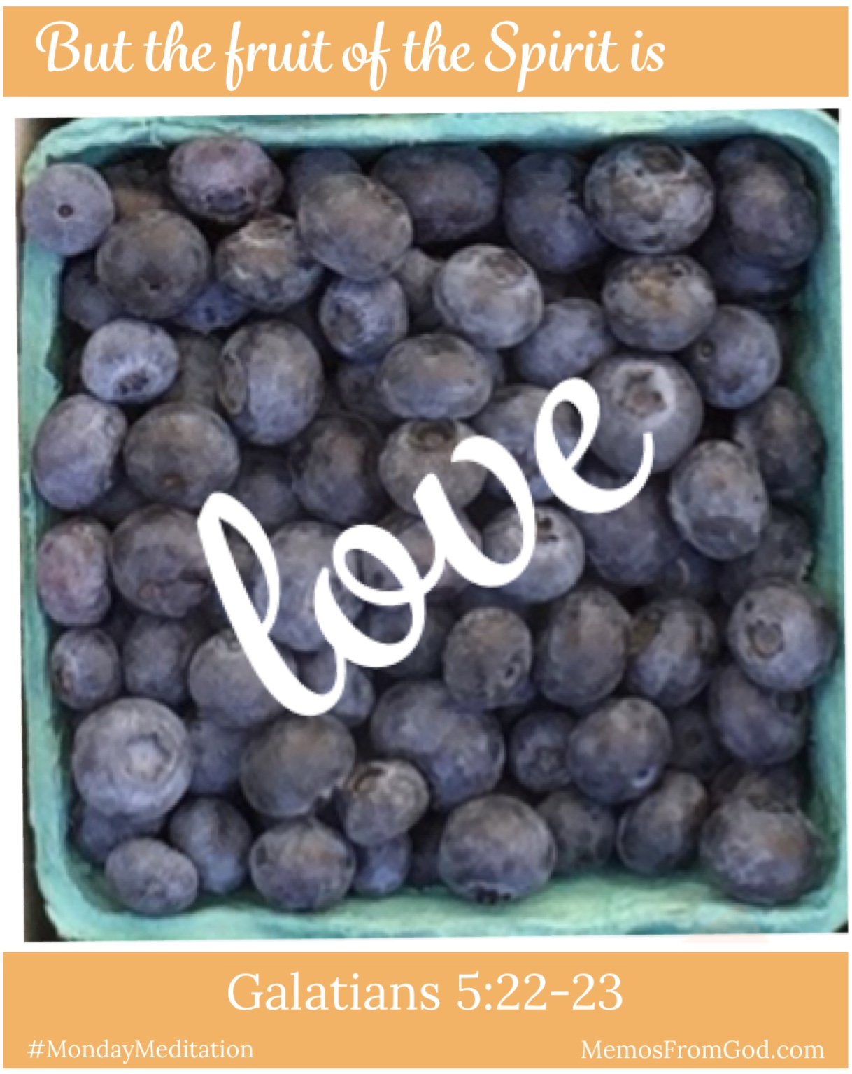 The top view of a pint box of blueberries. Caption: But the fruit of the Spirit is love. Galatians 5:22-23