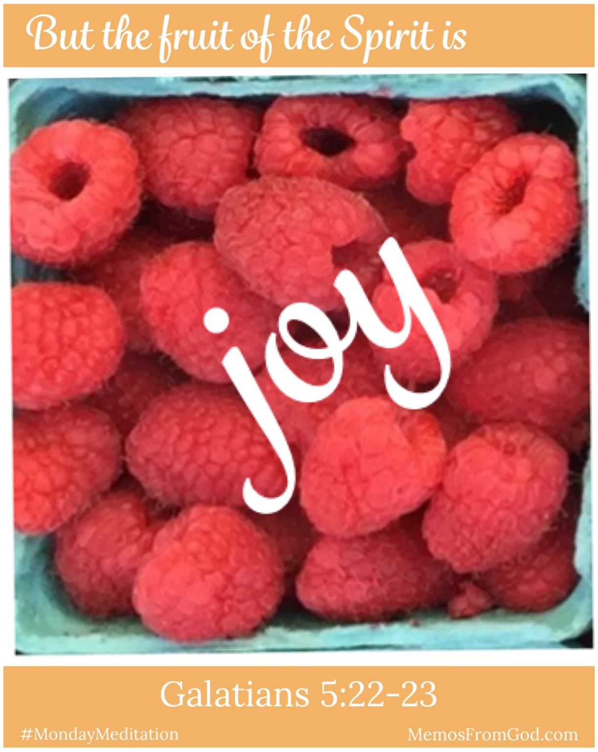 The top view of a pint box of red raspberries. Caption: But the fruit of the Spirit is joy. Galatians 5:22-23