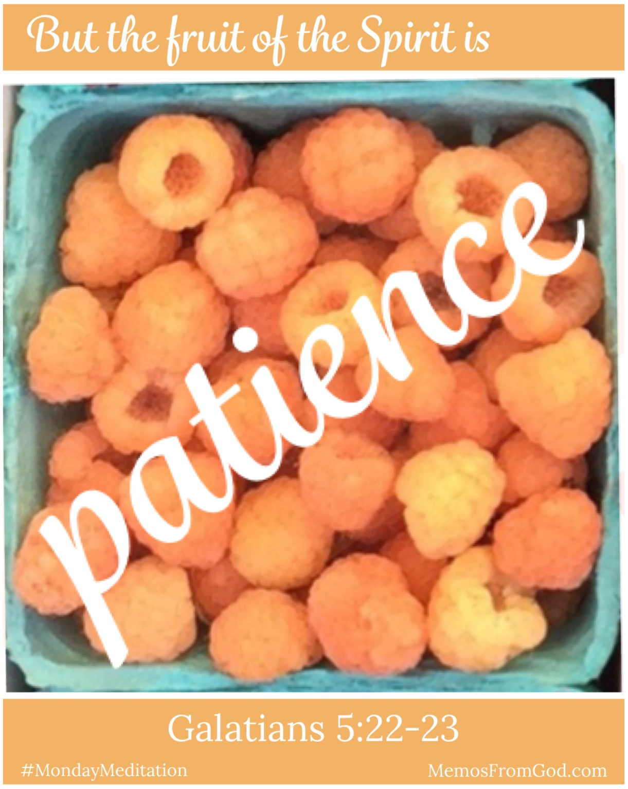 The top view of a pint box of golden raspberries. Caption: But the fruit of the Spirit is patience. Galatians 5:22-23