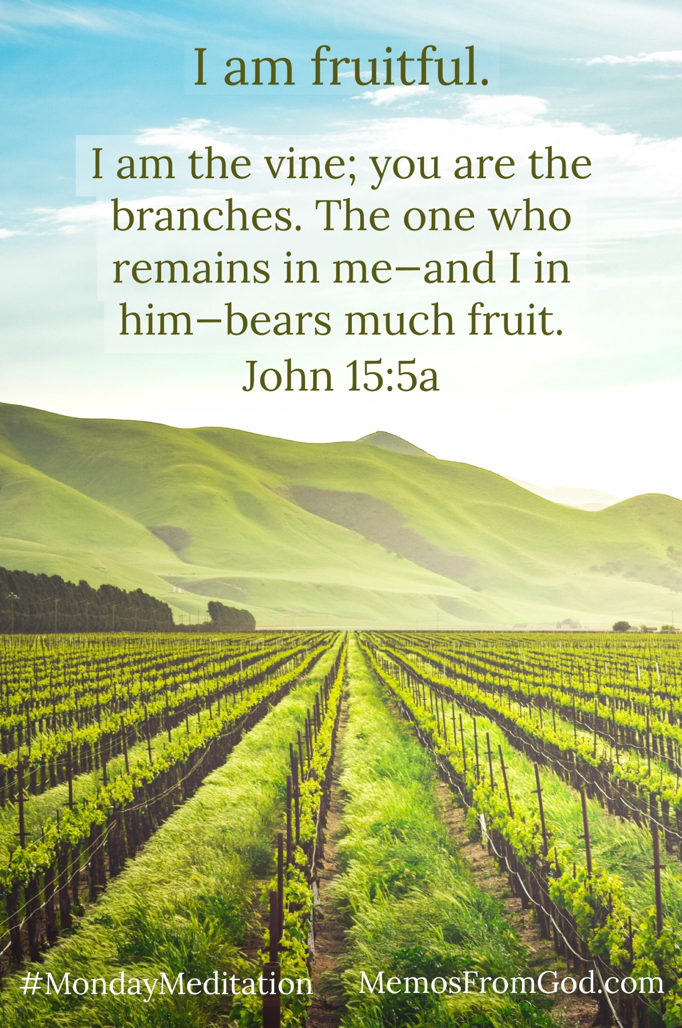 A lush green vineyard with a green mountain and blue sky in the background. Caption: I am the vine; you are the branches. The one who remains in me—and I in him—bears much fruit. John 15:15a