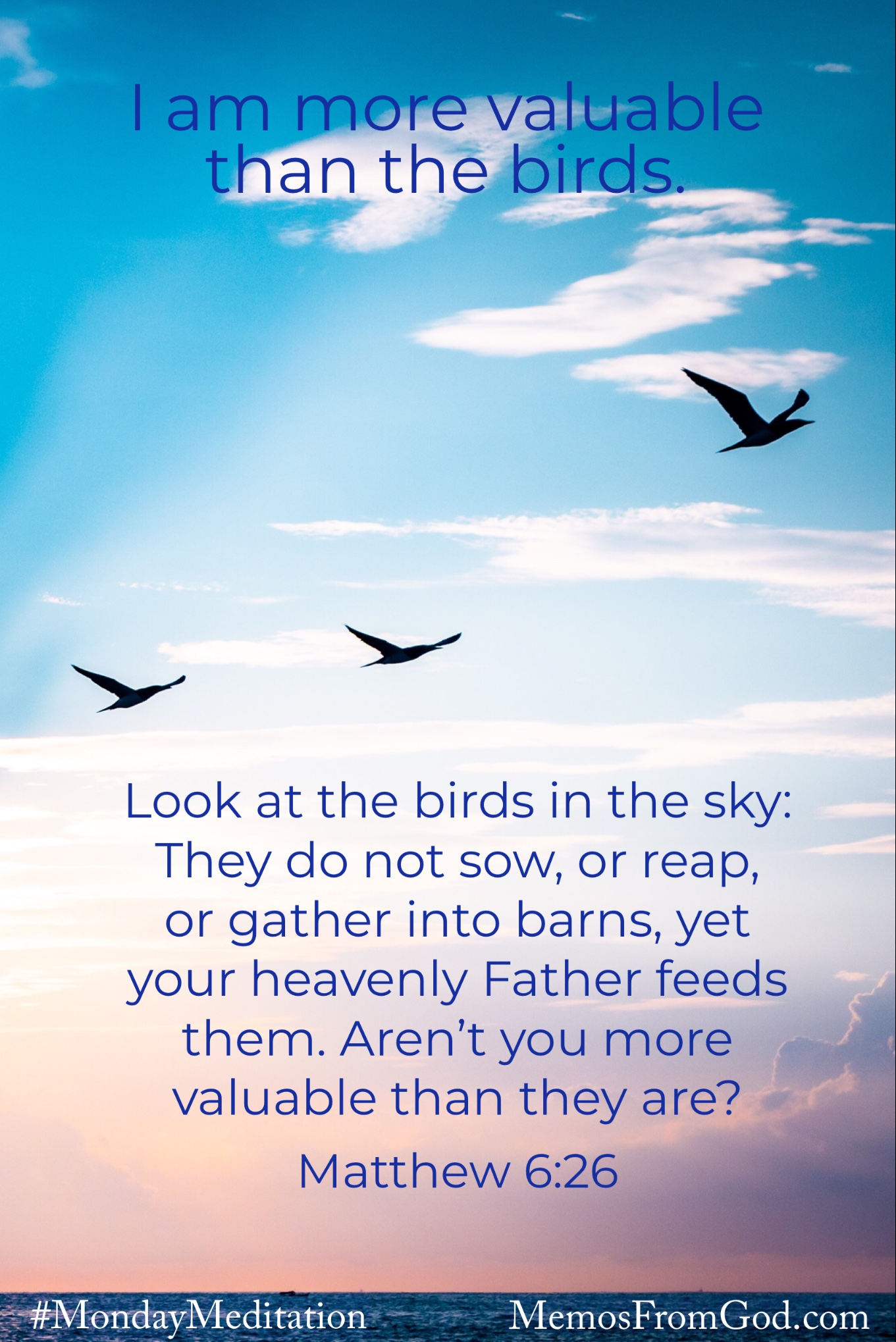 The silhouettes of three large birds flying in a light blue and pink sky. Caption: Look at the birds in the sky: They do not sow, or reap, or gather into barns, yet your heavenly Father feeds them. Aren't you more valuable than they are? Matthew 6:26