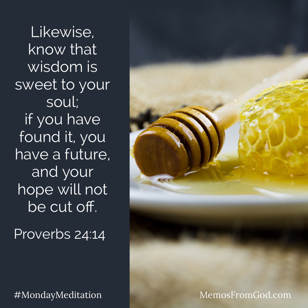 A plate with honeycomb and honey. Caption: Likewise, know that wisdom is sweet to your soul; if you have found it, you have a future, and your hope will not be cut off. Proverbs 24:14