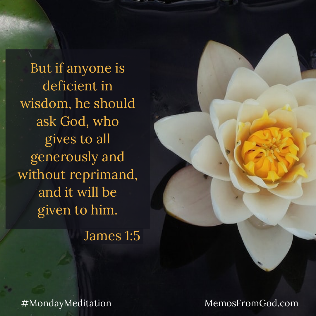 A white water lily with a yellow centre on a dark background. Caption: But if anyone is deficient in wisdom, he should ask God, who gives to all generously and without reprimand, and it will be given to him. James 1:5