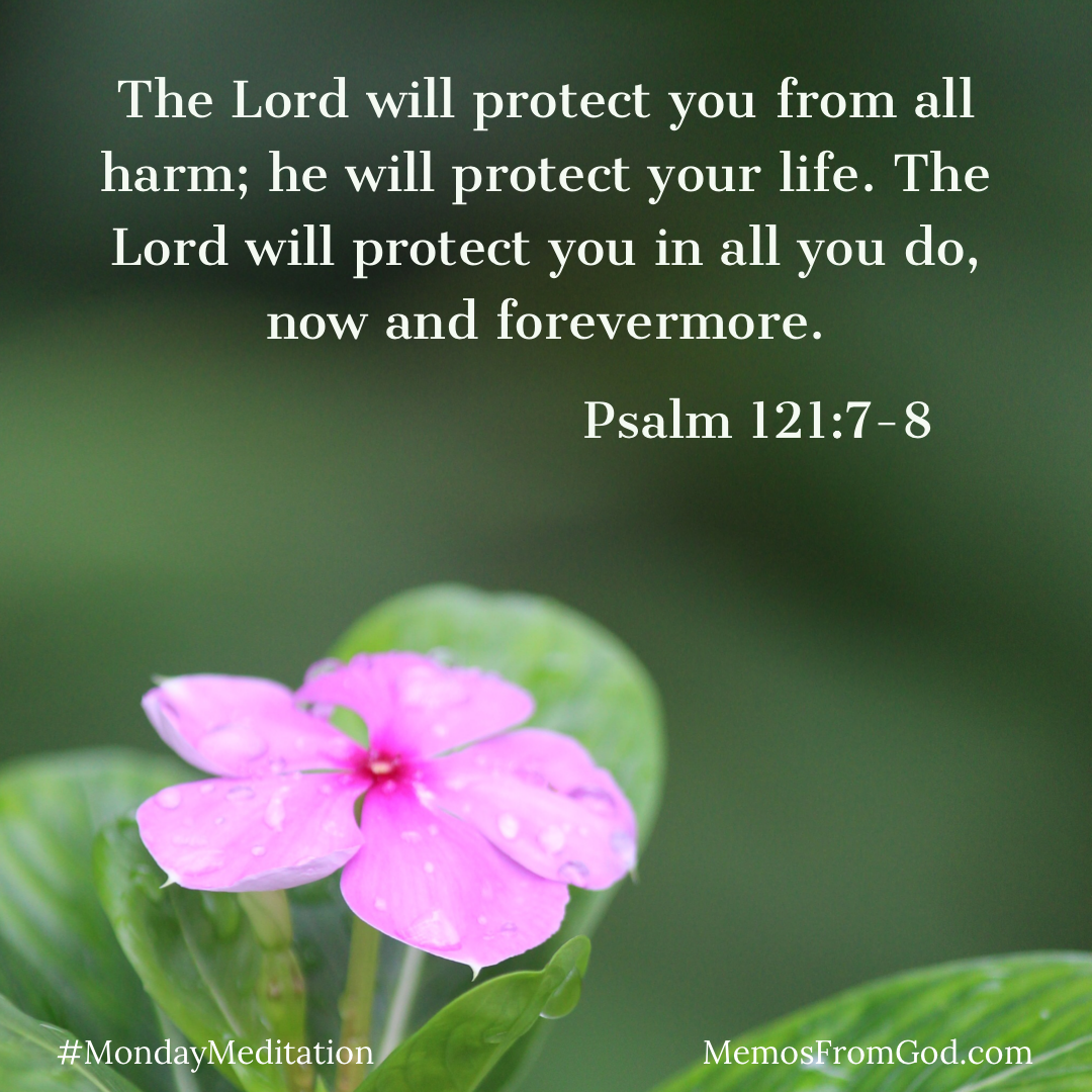 A delicate pink flower sprinkled with water droplets on a dark green background. Caption: The Lord will protect you from all harm; he will protect your life. The Lord will protect you in all you do, now and forevermore. Psalm 121:7-8
