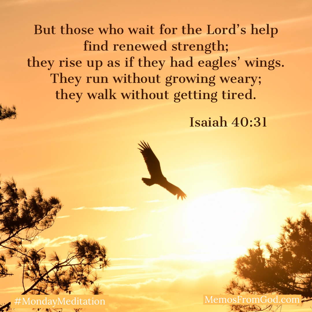 The silhouette of an eagle soaring between two trees against a golden sky. Caption: But those who wait for the Lord's help find renewed strength; they rise up as if they had eagles' wings. They run without growing weary; they walk without getting tired. Isaiah 40:31