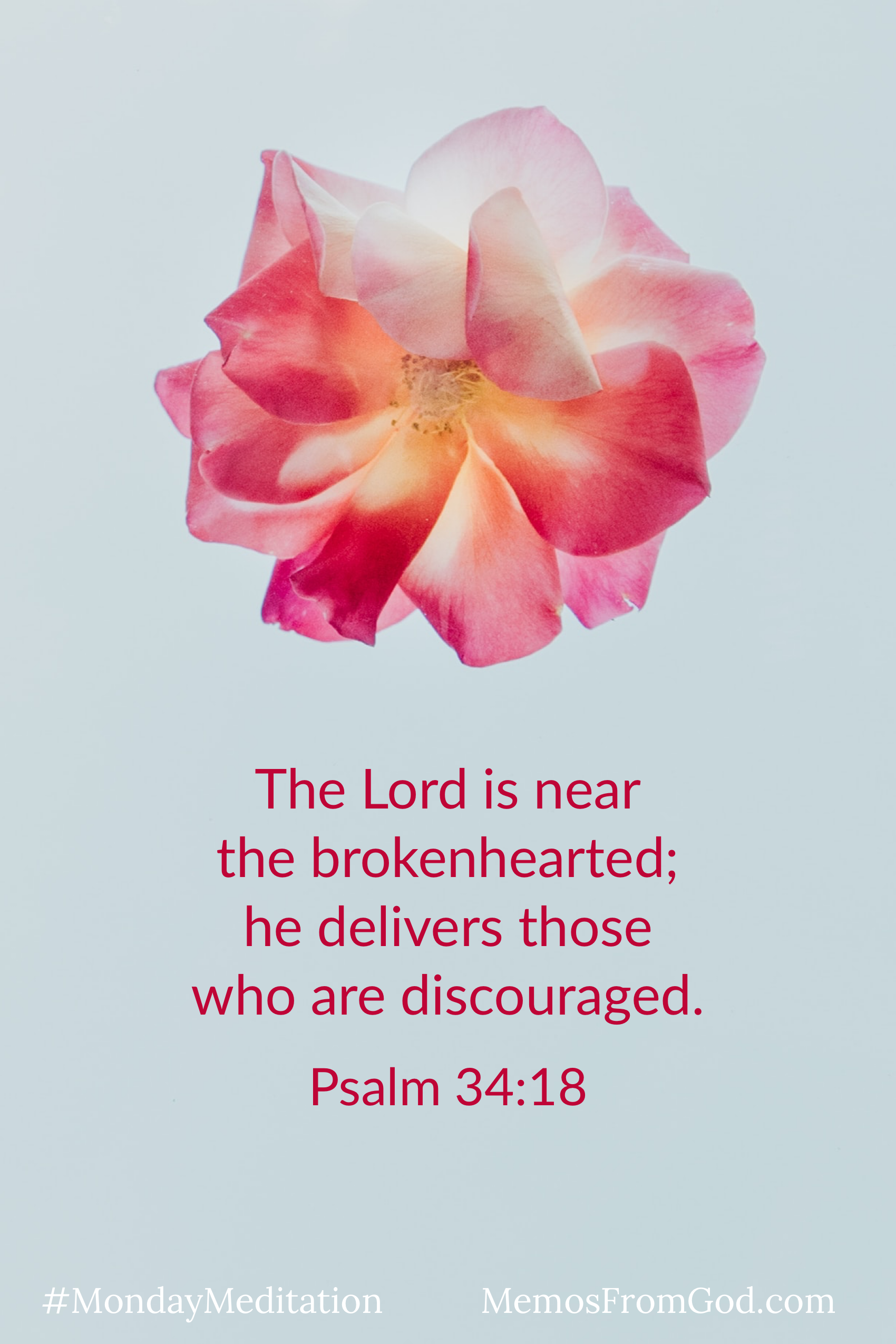 A multi-toned pink flower on a grey background. Caption: The Lord is near the brokenhearted; he delivers those who are discouraged. Psalm 34:18
