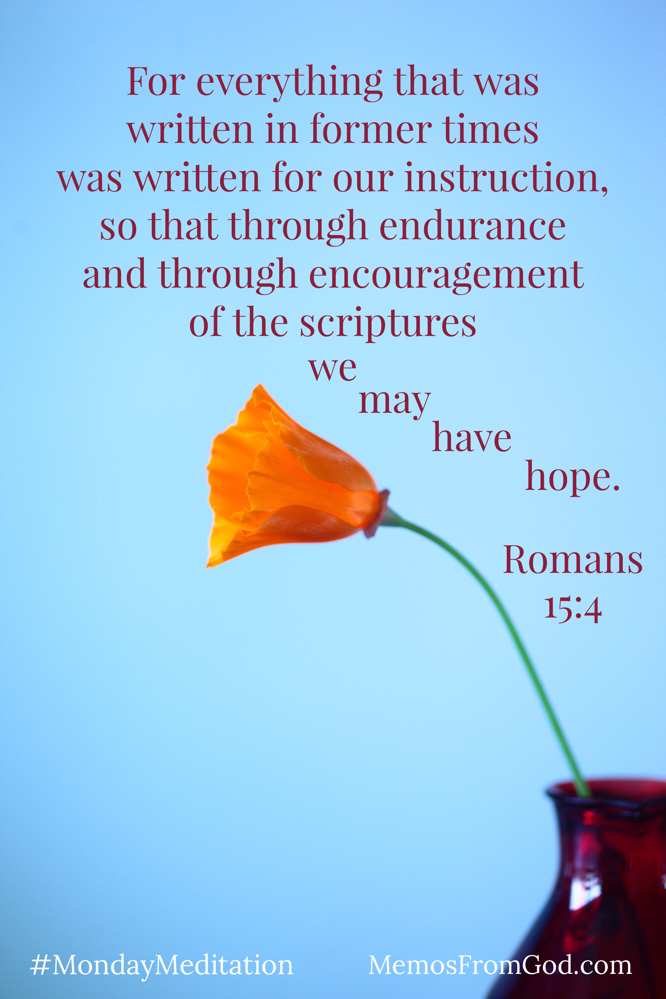 A single, small orange flower in a burgundy vase. Caption: For everything that was written in former times was written for our instruction, so that through endurance and through encouragement of the scriptures we may have hope. Romans 15:4