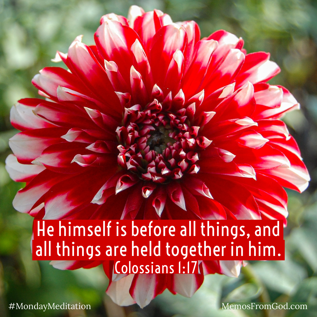 A full, bold, red and white flower on a green background. Caption: He himself is before all things, and all things are held together in him. Colossians 1:17