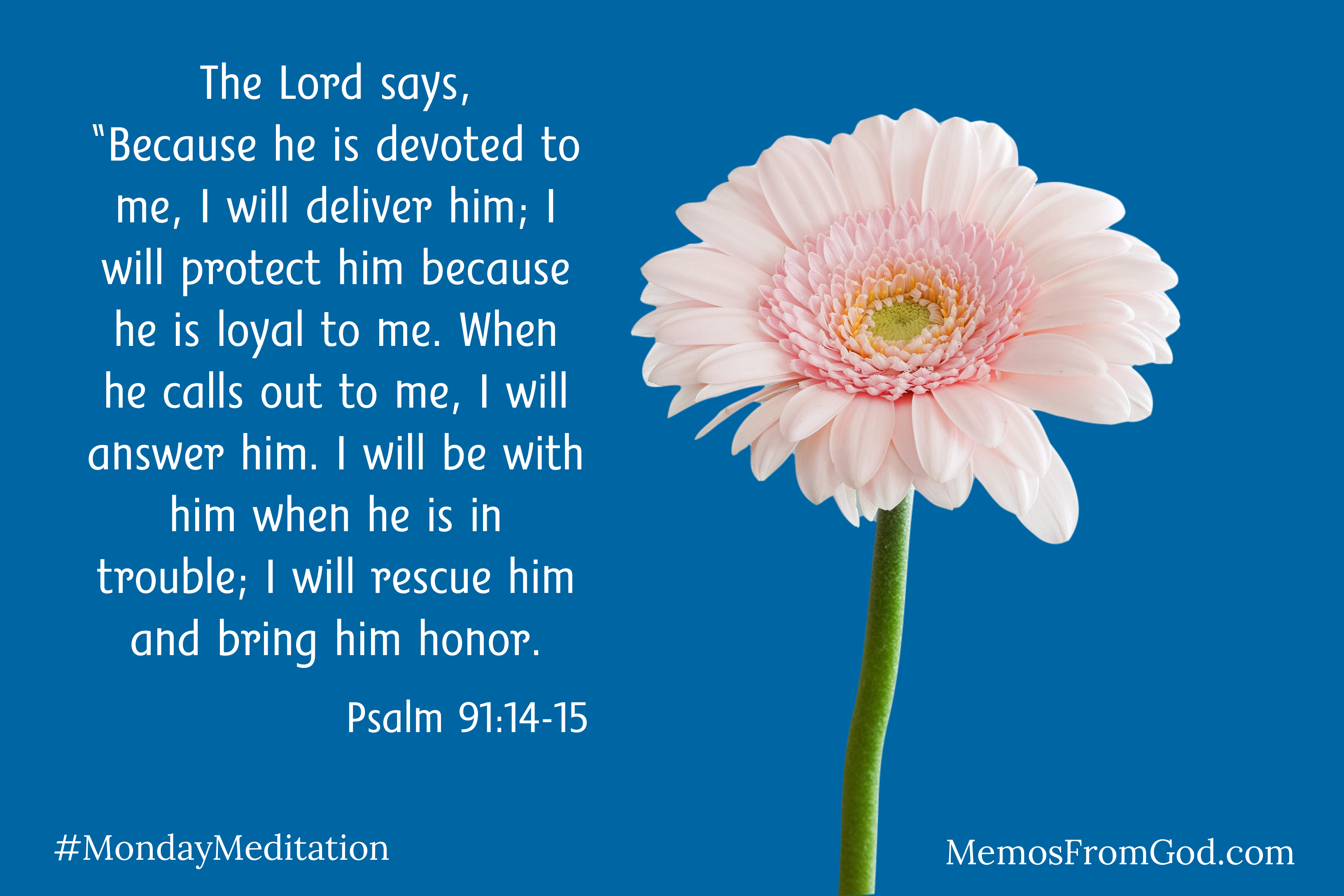 """A single light pink Gerber daisy on a medium blue background. Caption: The Lord says, """"Because he is devoted to me, I will deliver him; I will protect him because he is loyal to me. When he calls out to me, I will answer him. I will be with him when he is in trouble; I will rescue him and bring him honor. Psalm 91:14-15"""