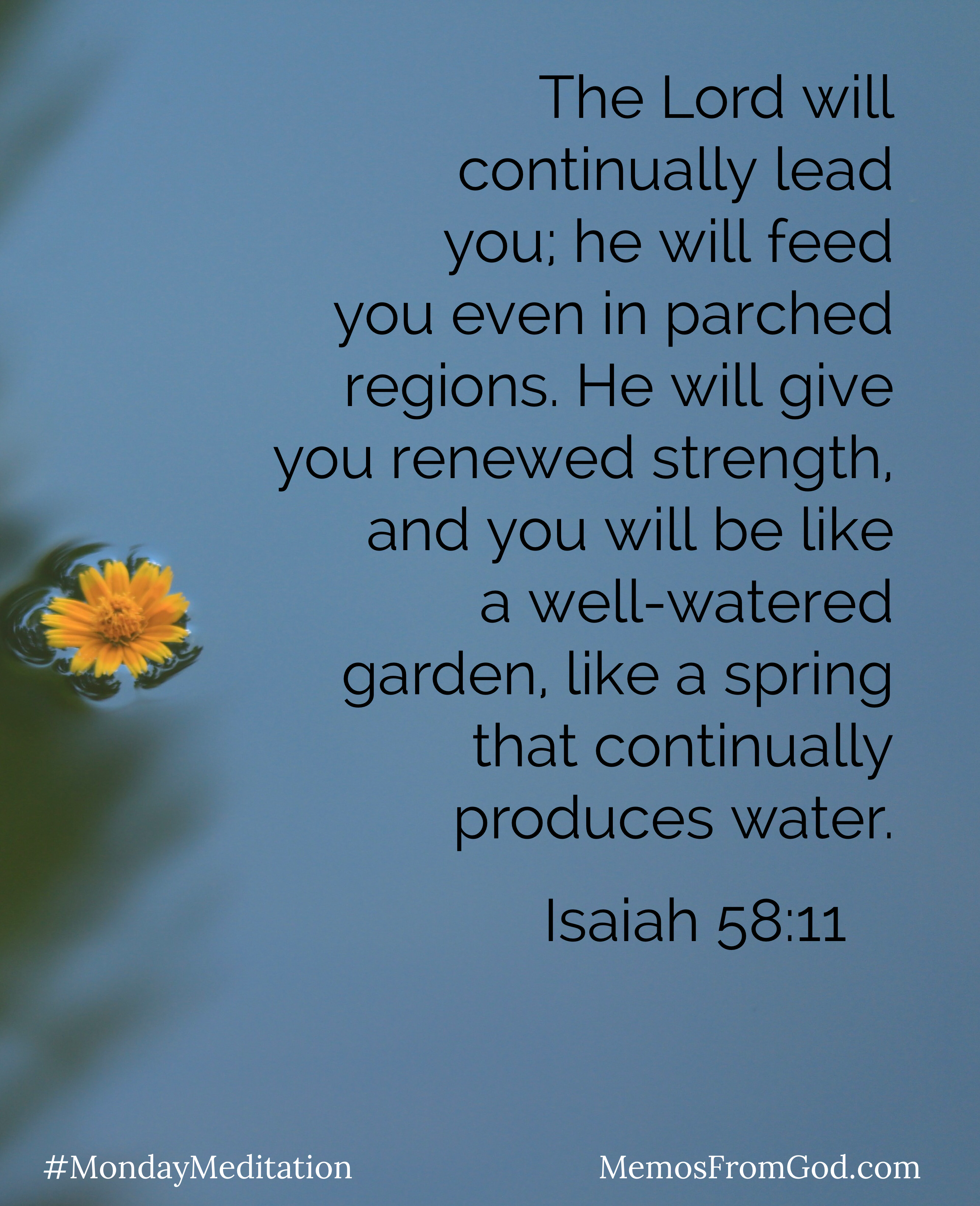 A small yellow flower floating in grey-blue water. Caption: The Lord will continually lead you; he will feed you even in parched regions. He will give you renewed strength, and you will be like a well-water garden, like a spring that continually produces water. Isaiah 58:11