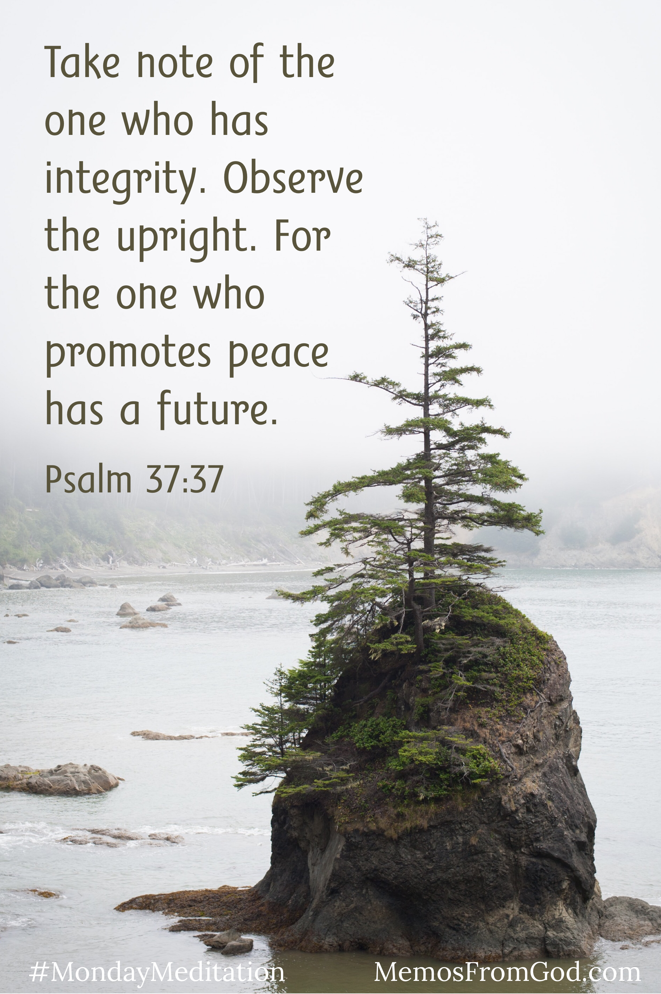 A lone evergreen growing out of a rock in the middle of a body water with a foggy background. Caption: take note of the one who has integrity. Observe the upright. For the one who promotes peace has a future. Psalm 37:37
