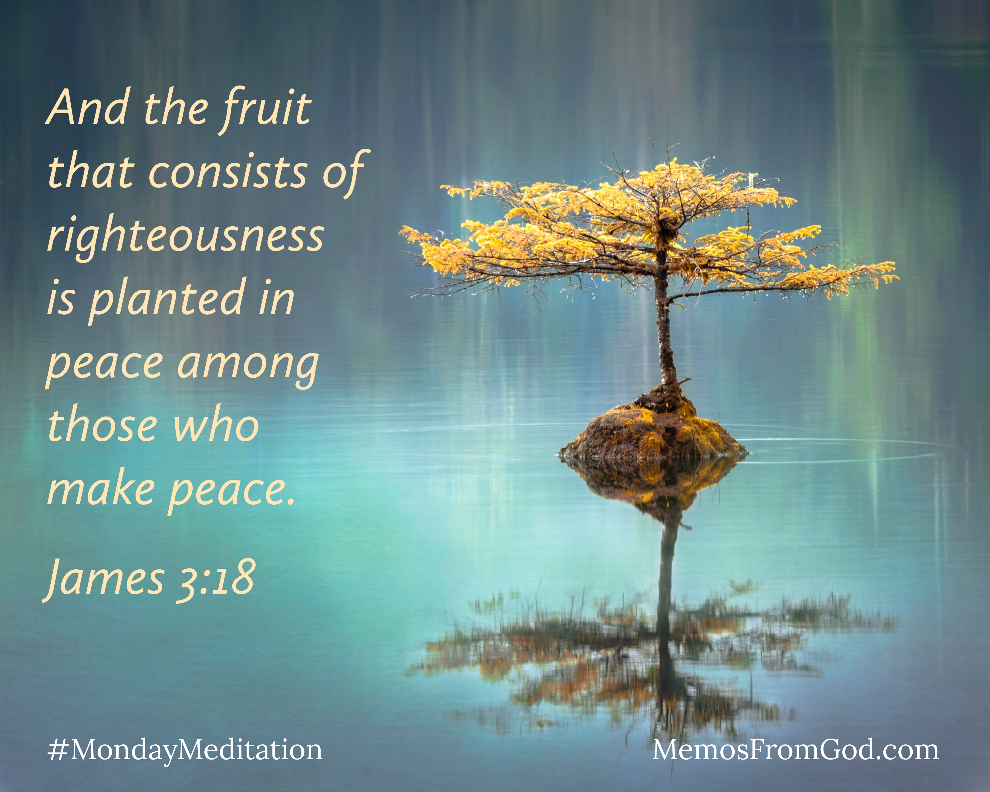 A small tree with golden leaves grows out of a rock in the middle of a calm, turquoise lake. Caption: And the fruit that consists of righteousness is planted in peace among those who make peace. James 3:18